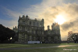Wollaton Hall and Deer Park 2 by MichaelJTopley