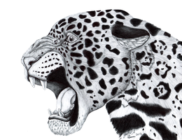 Jaguar by HDevers