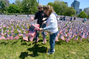 Memorial Day, Sea Of Flags 12 by Miss-Tbones