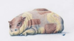 Baby Hippopotas by altered-worlds