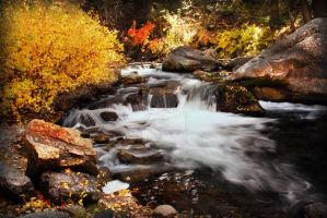 American fork river little fal by houstonryan