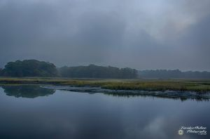 Pelham Bay Marshes 4 by ForsakenOutlaw