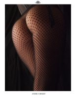 The Girl in the Fishnet 05 by auxcentral