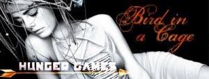 Katniss Banner 02 by Liliah