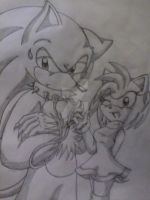 Sonic The Werehog y Amy Rose :3 by MonicaShadowXD
