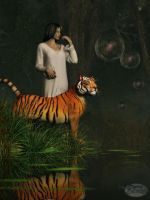 Dreams of Tigers and Bubbles by deskridge