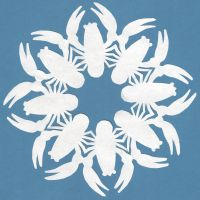Crayfish Snowflake by crawdadEmily
