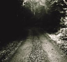 Gravel Road by Fumikazu