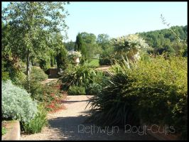 A Garden Fit For A King by Bethwyn