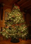 Christmas Tree (1) by IsabellaNY