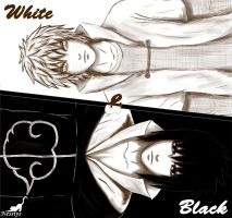 Black and White by nessiys