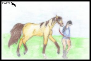 .:FWEC:. Well I'm New by Horses-Echo