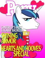 Pony Magazine: Hearts and Hooves Special by Dutchess6942