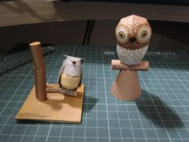 Owl Papercraft by bslirabsl