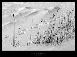 Journey by Mr808