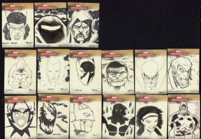 Some sketch cards by MarkIrwin