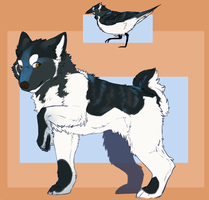 Malamute/Magpie Adopt-:CLOSED: by DemThree-Adopts
