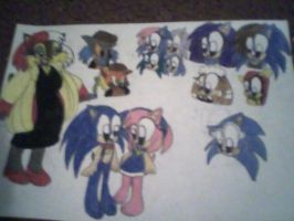 101 Hedgehogs by princessshannon07