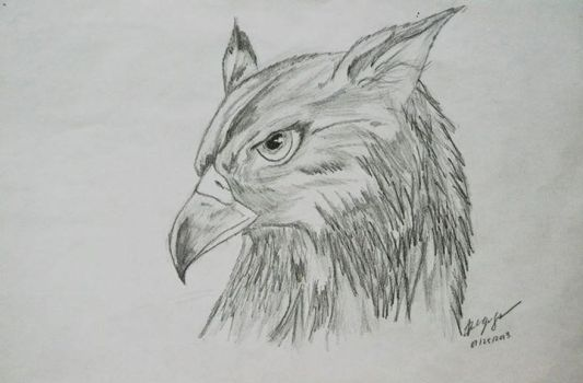 Gryphon by denzel01