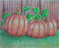 Pumpkins by 123thuraya
