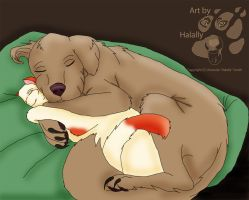 Dog and cat snuggling. Feral Forms by Halally