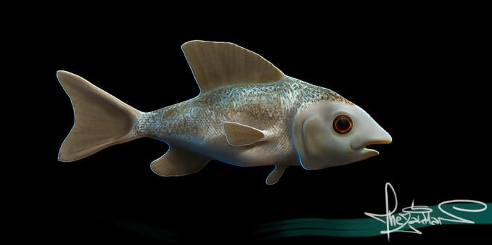 Zbrush Fish by TheZakMan