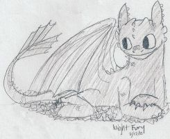 HTTYD- Night Fury Practice by sailor663