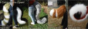Tail Commissions Open! by ErrorFactor