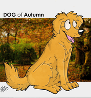 Dog of Autumn by Shy-Crackers
