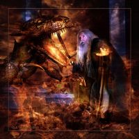 Dragon Vs. Wizard by Rickbw1 by Realm-of-Fantasy