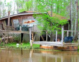 Swamp Fish House 1 by BlightProductions