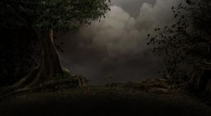 premade background 26 by stock-cmoura