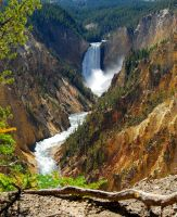 Lower Falls Yellowstone by afugatt