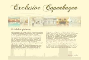 Exclusive Copenhagen - Website by nadda1984