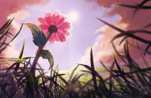 Bloom At Summer's End by ExitMothership