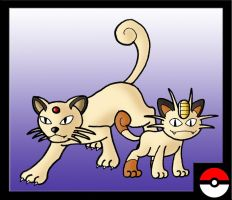 Meowth Family by ZappaZee