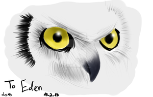 Owl Sketch by LilachSigal
