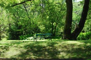 place 19 - spring, bench. by oro-elui-stock