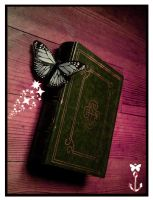 The Book of Secrets by illusiondevivre