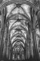 Cathedral07 by abelamario