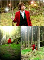 Bilbo-Cosplay - in nature 3 by XxGogetaCatxX