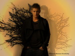 Dean Winchester branches by Vanessa28