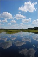 Water mirror by korbelsky by Scapes-club