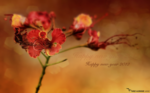 Happy new year 2012 by tt2008