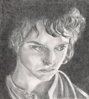 Frodo by feelinhungry