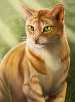 Firestar by GoldenPhoenix100