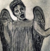 Weeping Angel by HBeezy