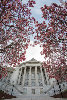 Spring Time at the Missouri State Capitol by FabulaPhoto