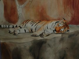 water color tiger by pikachoo08