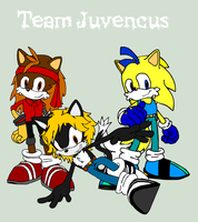 Team Juvencus by BingotheCat